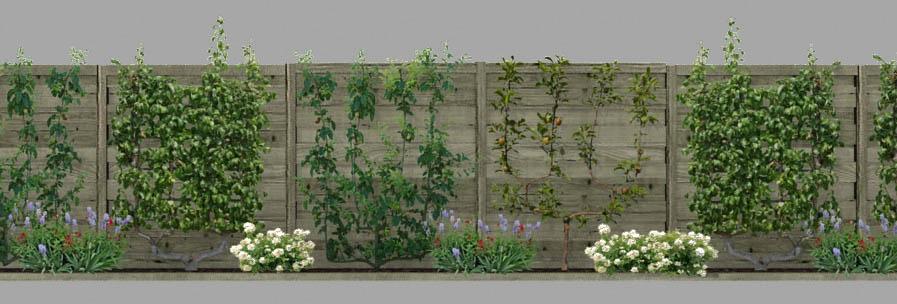 cloture jardin 3d. Black Bedroom Furniture Sets. Home Design Ideas